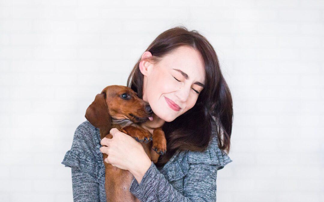 Socialização dos cães