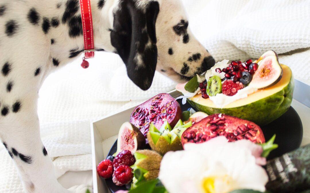 O mito das dietas 100% balanceadas
