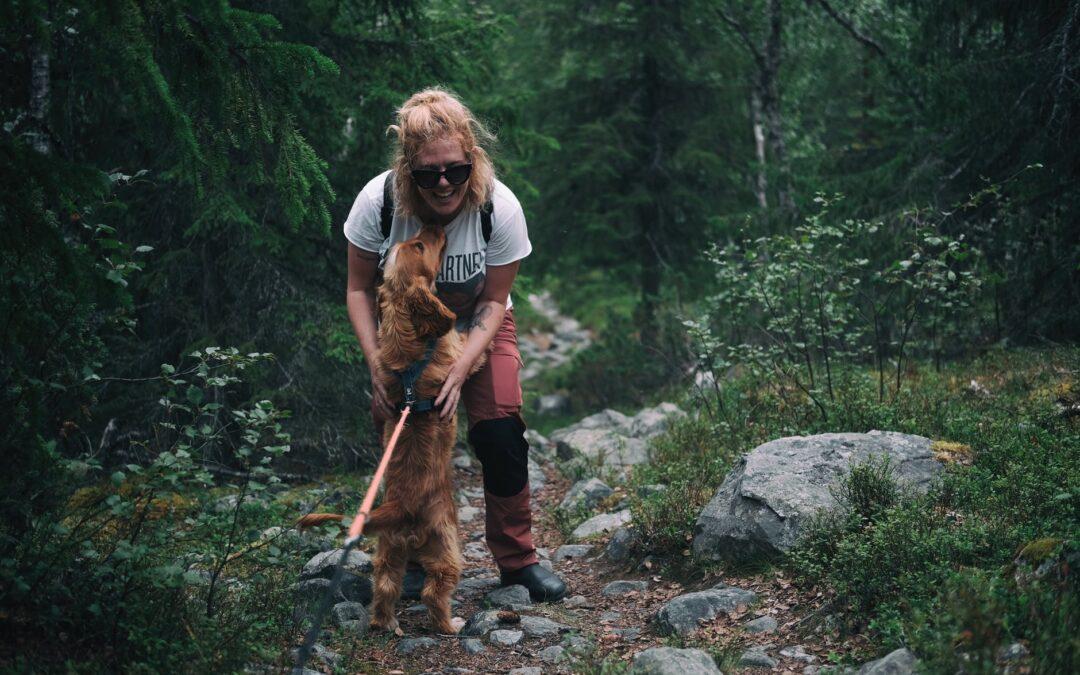 Cães podem farejar o nosso estado emocional